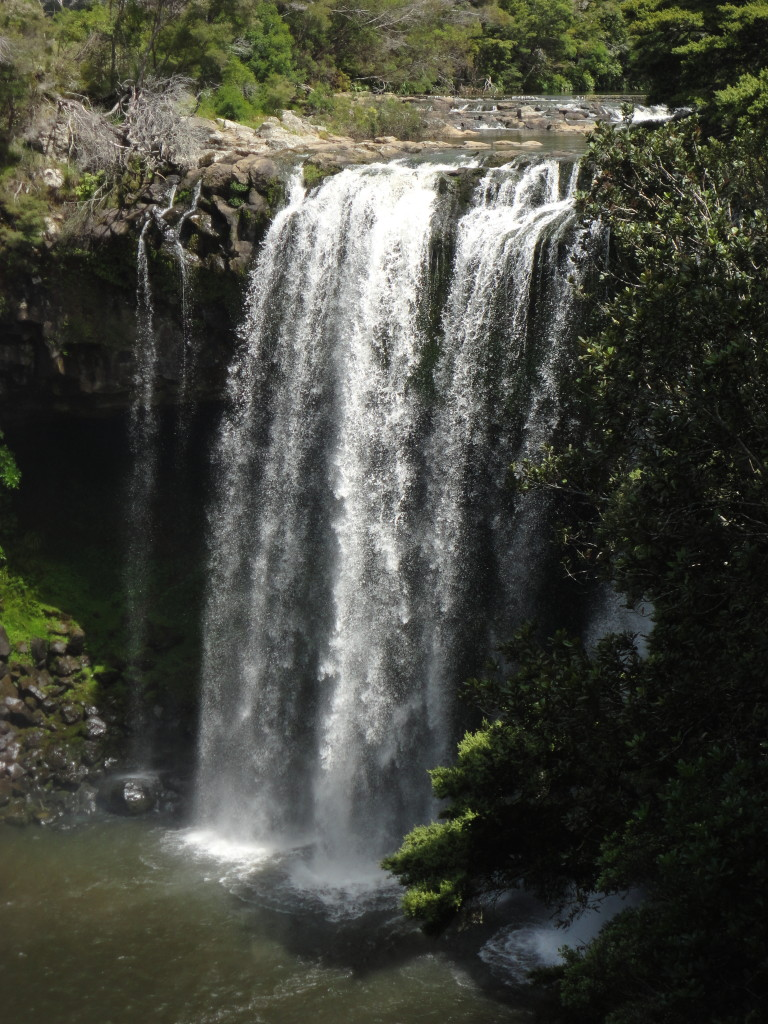 The Rainbow Falls near Waipapa