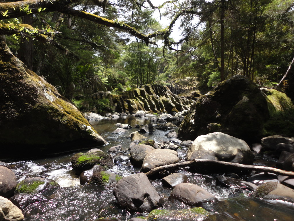The enchanting rocks and landscape at Wairere (Wairere Boulders)