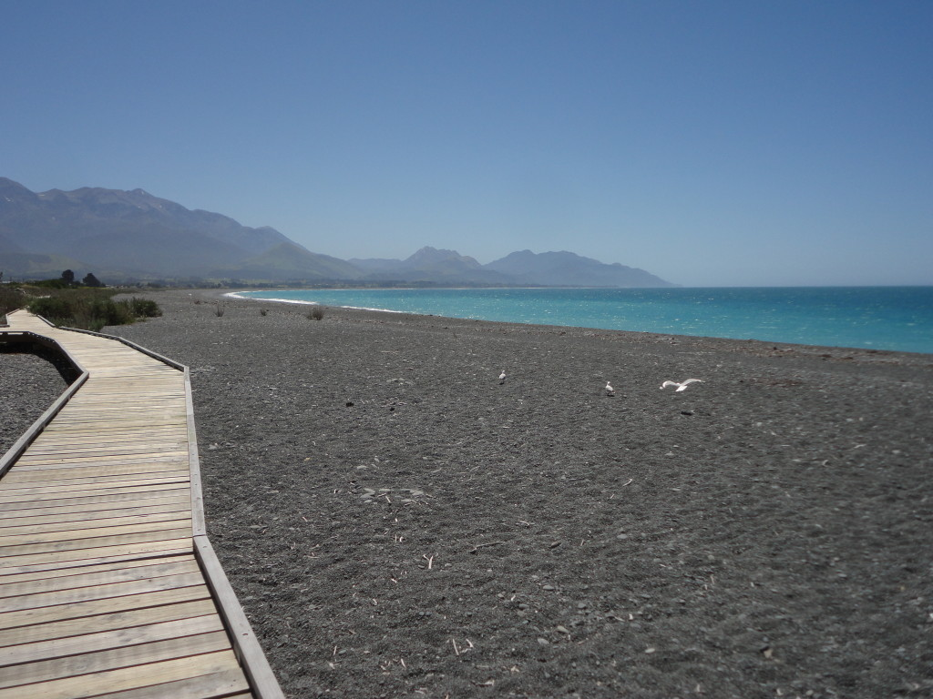 The bay of Kaikoura