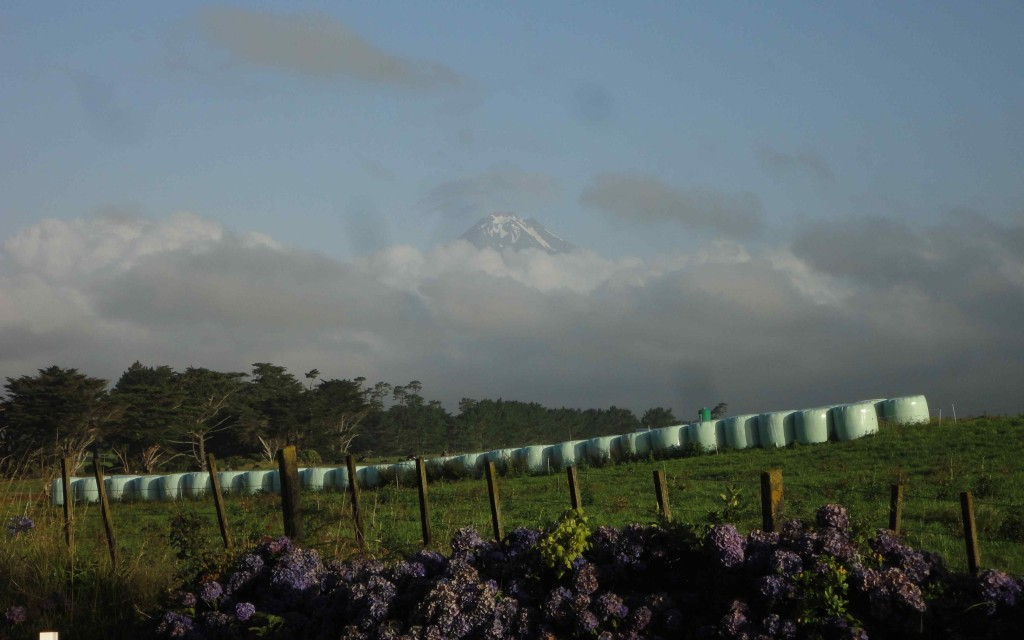 Majestic Mount Taranaki towers above the clouds