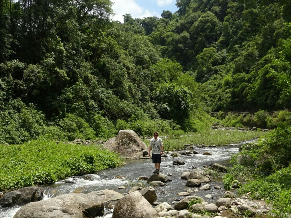 As we left Tucuman we were surrounded by thick forest